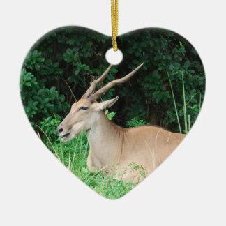 Southern Eland Habitat  Ornaments