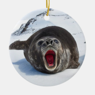 Southern Elephant Seal Mirounga Leonina Double-Sided Ceramic Round Christmas Ornament