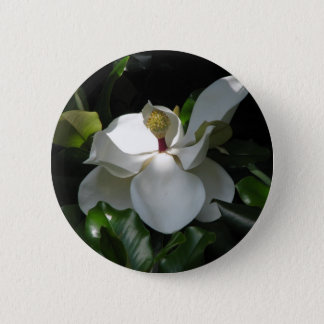 Southern Magnolia 6 Cm Round Badge