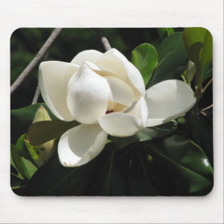 Southern Magnolia Mouse Mat