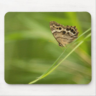 Southern Pearly Eye on a Palm Frond Mouse Pad