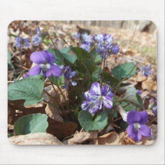 Southern Wood Violet Mouse Pad