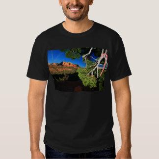 Southwest Christmas Shirt