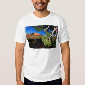 Southwest Christmas T-shirts