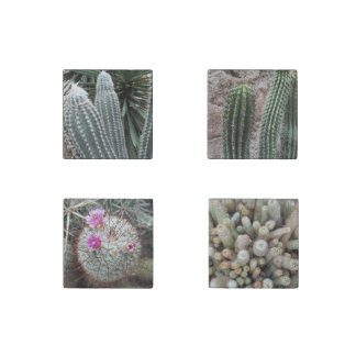 Southwest Desert Plants Cactus Cacti Stone Magnet