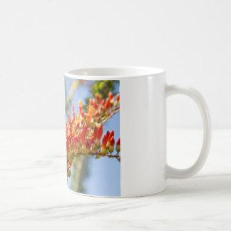 Southwest Ocotillo Bloom Basic White Mug