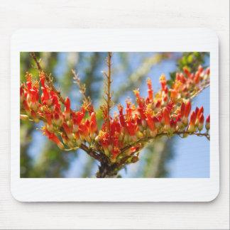 Southwest Ocotillo Bloom Mousepad