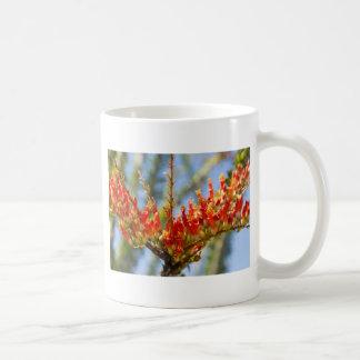 Southwest Ocotillo Bloom Coffee Mug