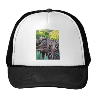 Southwestern Antique Wagon Wheel Cactus Hat