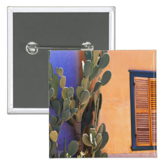 Southwestern Cactus (Opuntia dejecta) and 15 Cm Square Badge