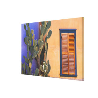 Southwestern Cactus (Opuntia dejecta) and Canvas Print