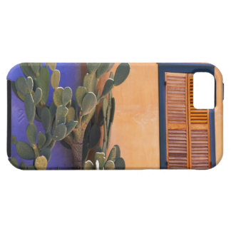 Southwestern Cactus (Opuntia dejecta) and Case For The iPhone 5