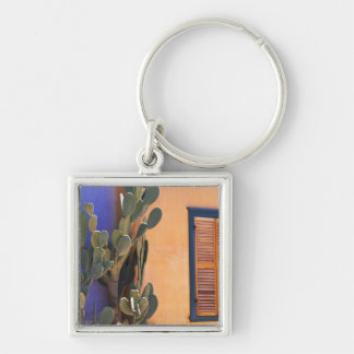 Southwestern Cactus (Opuntia dejecta) and Key Chains