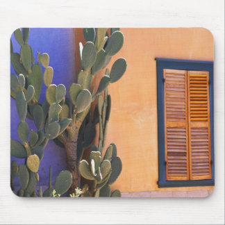 Southwestern Cactus (Opuntia dejecta) and Mouse Mat
