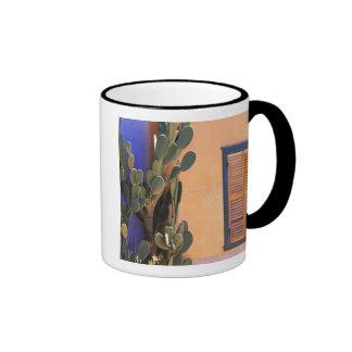 Southwestern Cactus (Opuntia dejecta) and Mugs