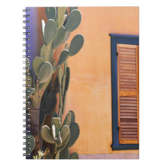 Southwestern Cactus (Opuntia dejecta) and Notebooks