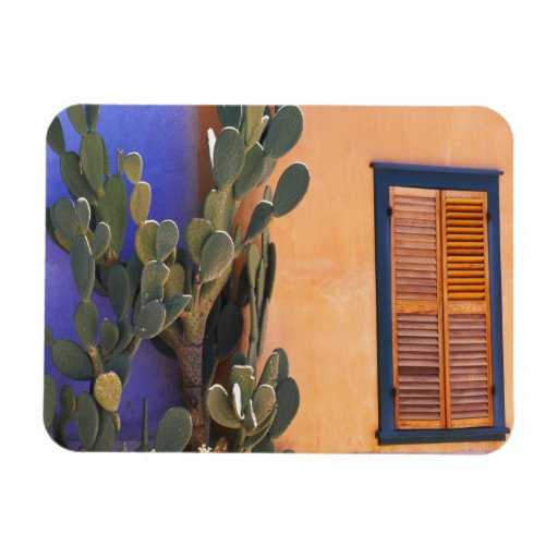 Southwestern Cactus (Opuntia dejecta) and Rectangle Magnets
