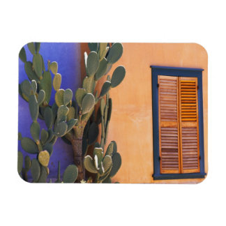 Southwestern Cactus (Opuntia dejecta) and Rectangular Photo Magnet