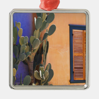 Southwestern Cactus (Opuntia dejecta) and Silver-Colored Square Decoration