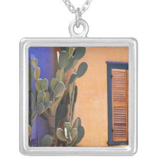 Southwestern Cactus (Opuntia dejecta) and Square Pendant Necklace