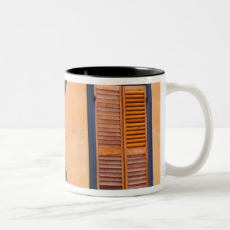 Southwestern Cactus (Opuntia dejecta) and Two-Tone Coffee Mug