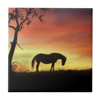 Southwestern Color Horse in Sunrise Tile