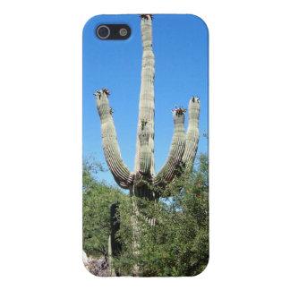 Southwestern Desert Saguaro Cactus Case For The iPhone 5