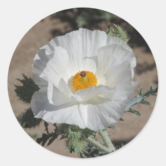 Southwestern Pricklypoppy Round Sticker
