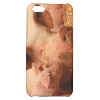 Sow and Piglets iPhone 5C Case
