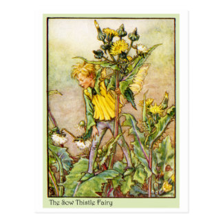 SOW THISTLE FAIRY POSTCARD