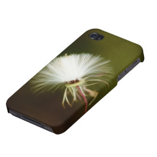 Sow Thistle Case For iPhone 4