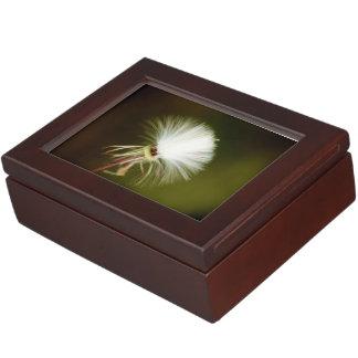 Sow Thistle Seed Pod Keepsake Box