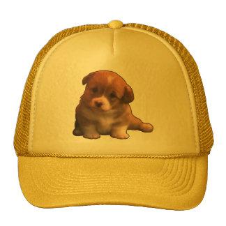 Soy un cachorrito hats