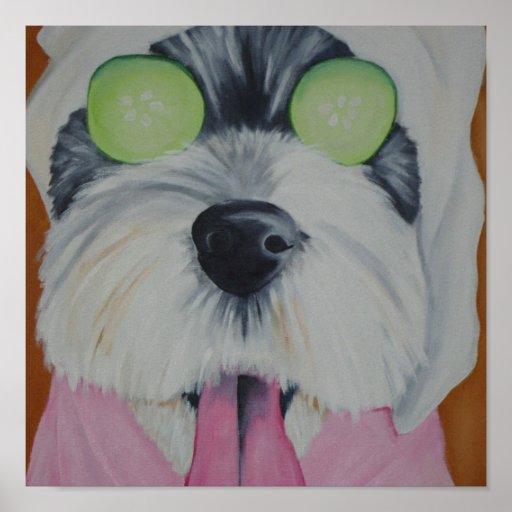 Spa Dog Poster
