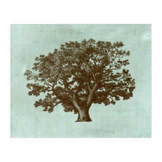 Spa Tree IV Acrylic Wall Art