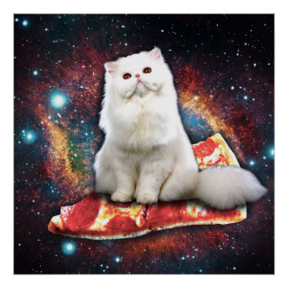 Space cat pizza poster