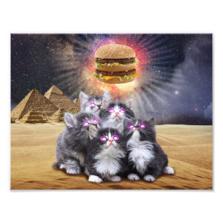 space cats looking for the burger photo print