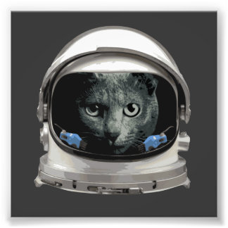 Space Helmet Astronaut Cat Photo Print