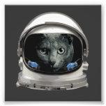 Space Helmet Astronaut Cat Photograph