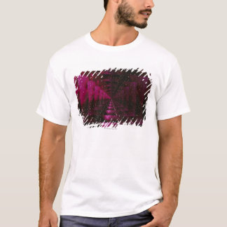 Space Image 5 T-Shirt