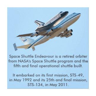 Space shuttle Endeavour Canvas Prints