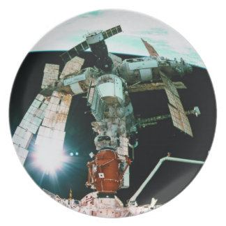 Space Station Plate