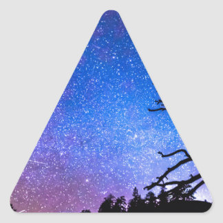 Space The Final Frontier Triangle Sticker