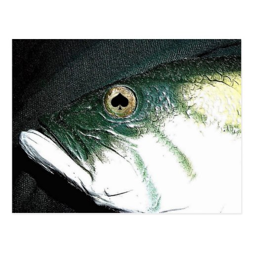 Spades Fish Eyes Poker Art Postcard