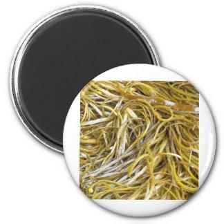Spaghetti Seaweed 6 Cm Round Magnet