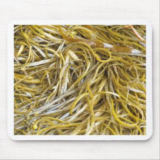 Spaghetti Seaweed Mouse Pad