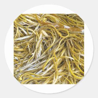 Spaghetti Seaweed Round Sticker