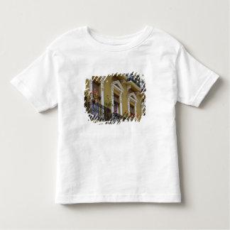 Spain, Sevilla, Andalucia Geraniums hang over Toddler T-Shirt