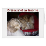 "SPAINIEL IS ""DREAMING OF FAV PERSON-""YOU"" GREETING CARD"