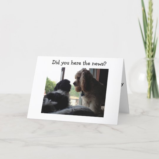 Spaniel And Havanese Say Happy Birthday To You Card